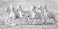 Water Horses V Fine-Art Print