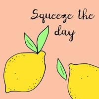 Lemon Squeeze I Fine-Art Print