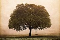 The Hopeful Oak Fine-Art Print