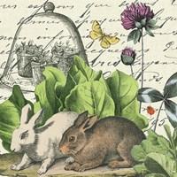 Garden Rabbit II Fine-Art Print