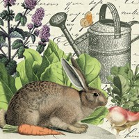 Garden Rabbit I Fine-Art Print