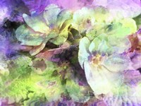 Pink and Green Floral Abstract Fine-Art Print