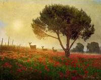 Trees Poppies Deer Fine-Art Print