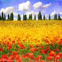 Lombardy Fine-Art Print