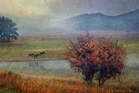 Horses And Lone Oak Fine-Art Print