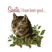 Cat Christmas 1 Fine-Art Print