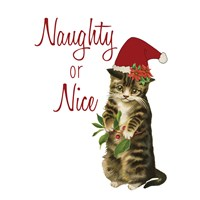 Cat Christmas 3 Fine-Art Print
