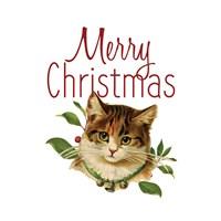 Cat Christmas 4 Fine-Art Print