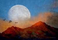 Ibis Moon Fine-Art Print