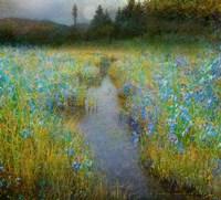 Kelly Marsh Iris Fine-Art Print
