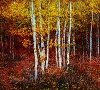 Aspen Forest Above Kelly Fine-Art Print