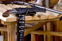 Six Shooter With Gun Belt Payson Arizona Fine-Art Print