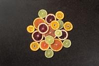 Citrus Drama II Fine-Art Print