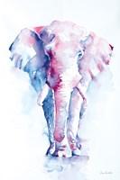 An Elephant Never Forgets Fine-Art Print