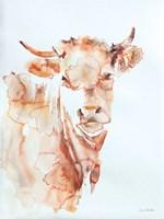 Village Cow Fine-Art Print
