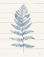 Fern Print II Blue Crop Fine-Art Print