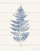 Fern Print I Blue Crop Fine-Art Print