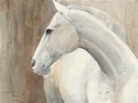 Pearl Fine-Art Print
