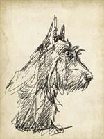 Breed Studies I Fine-Art Print