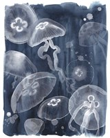 Moon Jellies I Fine-Art Print