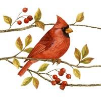 Birds & Berries III Fine-Art Print