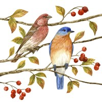 Birds & Berries IV Fine-Art Print
