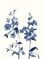 Indigo Wildflowers III Fine-Art Print