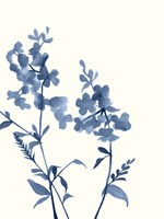 Indigo Wildflowers IV Fine-Art Print