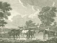 Equestrian Scenes I Fine-Art Print