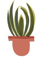 Mod Cactus IV Fine-Art Print