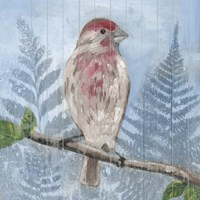 Eastern Songbird I Fine-Art Print