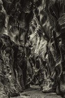 Slot Canyon Utah 10 Sepia Fine-Art Print