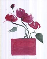 Peonies Fine-Art Print