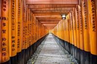 Fushimi Inari Taisha Shrine Kyoto Fine-Art Print