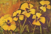 Yellow Pansies Fine-Art Print