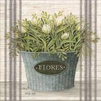 Galvanized Flores Fine-Art Print