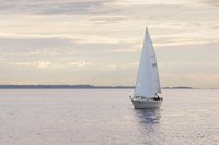 Sailboat in Semiahmoo Bay Fine-Art Print
