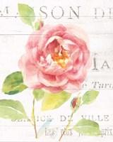 Maison des Fleurs V Fine-Art Print