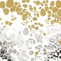 Speckled Trio II Fine-Art Print