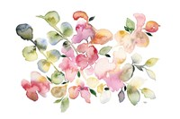 Shades of Pink Watercolor Floral Fine-Art Print