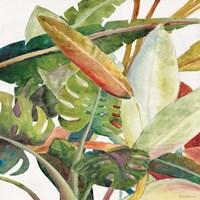 Tropical Lush Garden Square II Fine-Art Print