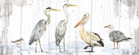 Birds of the Coast Rustic Panel Fine-Art Print