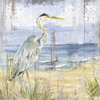 Birds of the Coast Rustic I Fine-Art Print