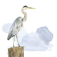 Birds of the Coast on White I Fine-Art Print