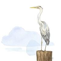 Birds of the Coast on White II Fine-Art Print