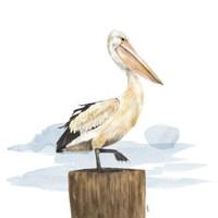 Birds of the Coast on White III Fine-Art Print
