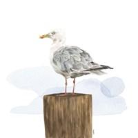 Birds of the Coast on White IV Fine-Art Print