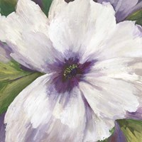 Violet Orchid II Fine-Art Print
