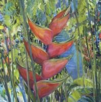 Fairchild Beauty Fine-Art Print