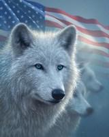 Arctic Wolves America Fine-Art Print